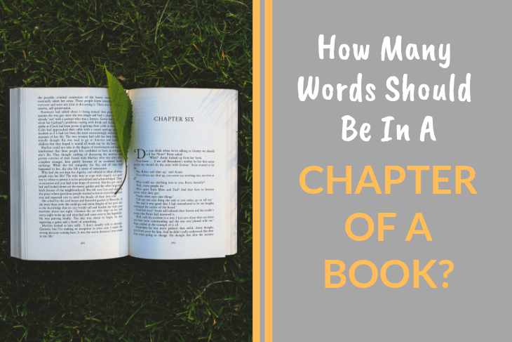 How Many Words in a Chapter